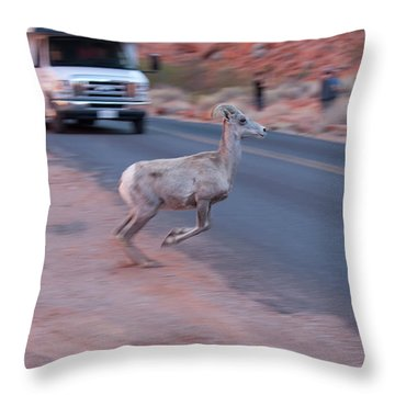 Tourists Intrusion In Nature Throw Pillow