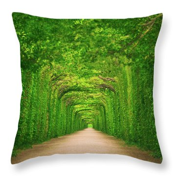 Towards Throw Pillow