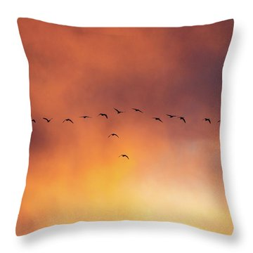 Towards The Sun Throw Pillow