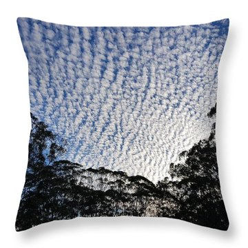 Towen Mountain  Throw Pillow