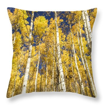 Towering Aspens Throw Pillow