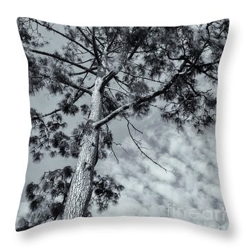 Throw Pillow featuring the photograph Towering by Linda Lees