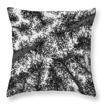 Throw Pillow featuring the photograph Towering Pines by Heather Kenward
