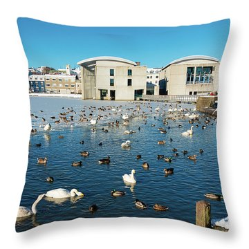 Throw Pillow featuring the photograph Town Hall And Swans In Reykjavik Iceland by Matthias Hauser