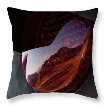 Throw Pillow featuring the photograph Track Reflections by Colleen Coccia