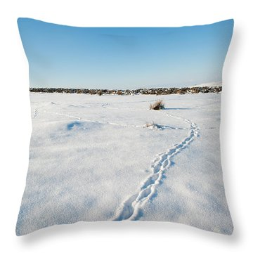 Tracks In The Snow Throw Pillow