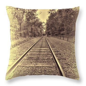 Tracks Through The Park Throw Pillow