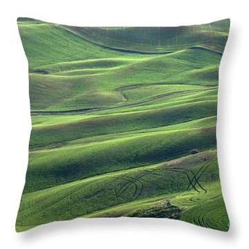 Tractor Tracks Agriculture Art By Kaylyn Franks Throw Pillow