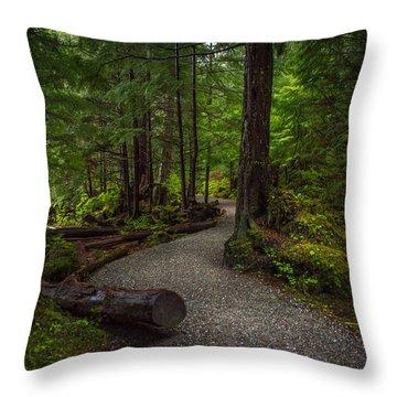 Trail Around Ward Lake Ketchikan Alaska Throw Pillow by Michael J Bauer