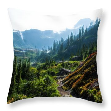Trail In Mountains Throw Pillow
