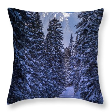 Trail Into Mayflower Gulch Throw Pillow by Michael J Bauer