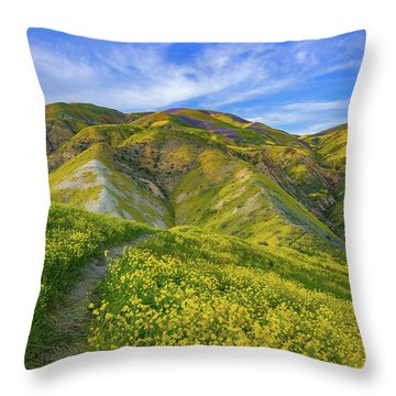 Trail Into The Heart Of The Temblors Throw Pillow