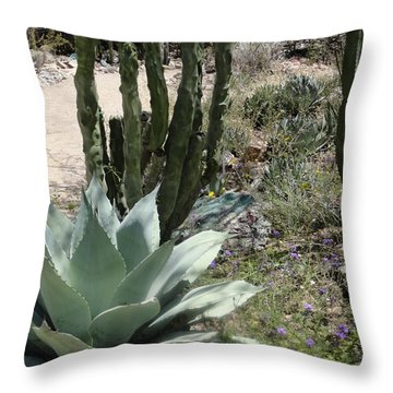 Trail Of Cactus Throw Pillow