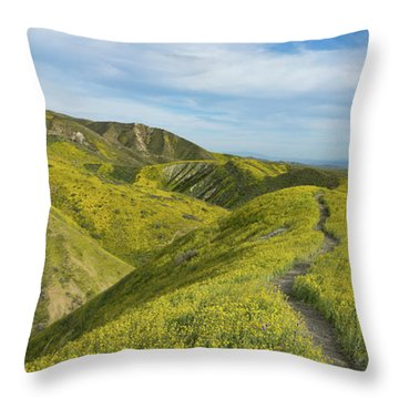 Trail Of Goldfields In The Temblor Range Throw Pillow