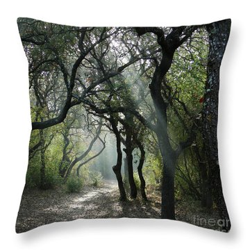 Trail Of Light Throw Pillow