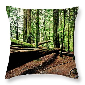 Trail Of The Fallen Giants Of Cathedral Grove Throw Pillow