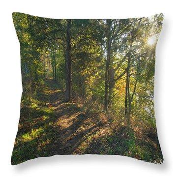 Trail Throw Pillow by Tim Fitzharris