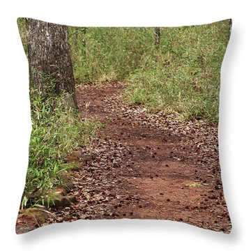 Throw Pillow featuring the photograph Trail To Beauty by Kim Henderson