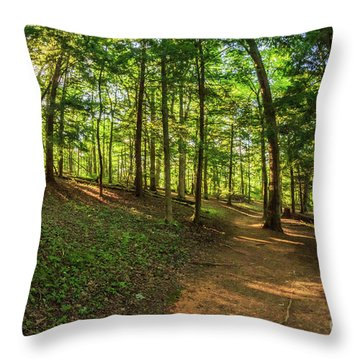 Trail To John Oliver Cabin Throw Pillow