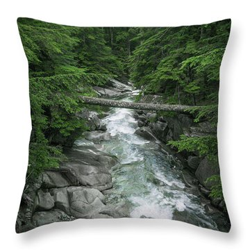 Trail To The Falls Throw Pillow