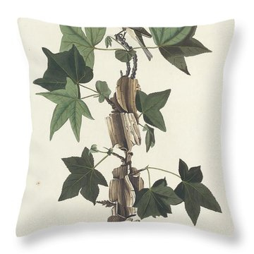 Traill's Flycatcher Throw Pillow