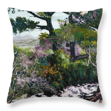 Trails Beauty Throw Pillow