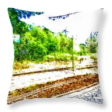 Train In Station Throw Pillow