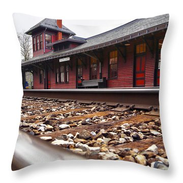 Train Station Throw Pillow by Mitch Cat