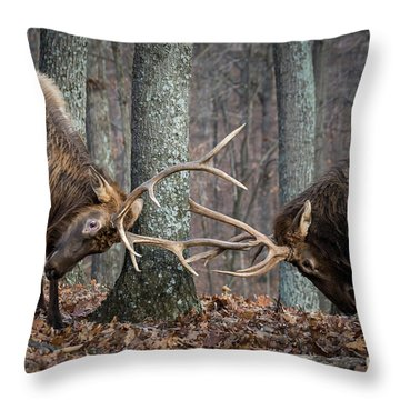Training 101 Throw Pillow by Andrea Silies