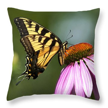 Tranquil Butterfly Throw Pillow by Christina Rollo