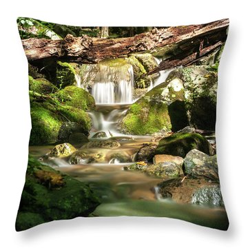 Throw Pillow featuring the photograph Tranquil Flow by Lara Ellis