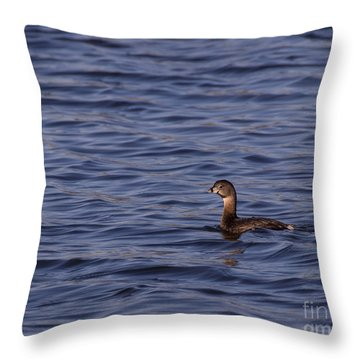 Tranquil In Blue Throw Pillow