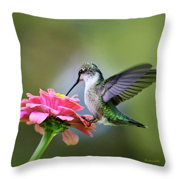 Tranquil Joy Hummingbird Square Throw Pillow by Christina Rollo