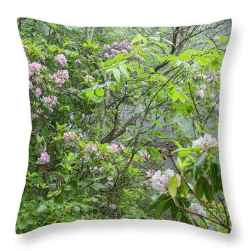 Throw Pillow featuring the photograph Tranquil Nature by Chris Scroggins