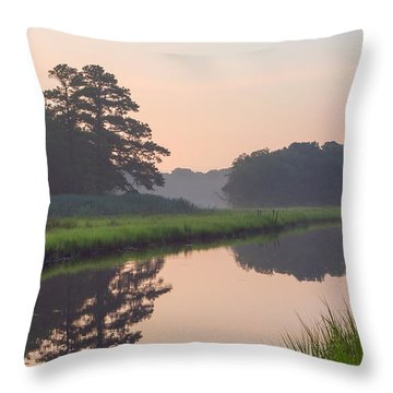 Tranquil Reflections Throw Pillow by Allan Levin