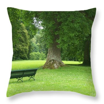 Tranquil Space Throw Pillow by Mary Mikawoz