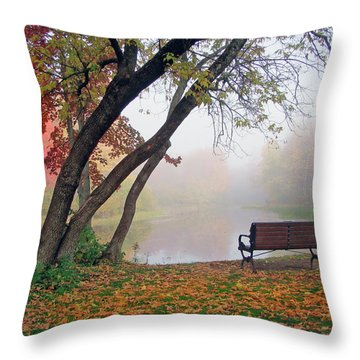 Tranquil View Throw Pillow