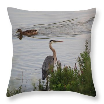 Tranquil Waterlife Throw Pillow by Cathy  Beharriell