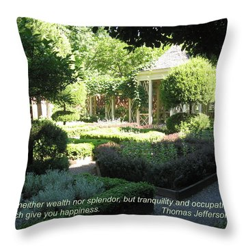 Tranquility And Occupation Throw Pillow by Deborah Dendler