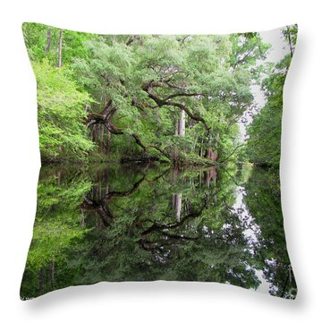 Throw Pillow featuring the photograph Tranquility by Barbara Bowen