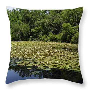 Tranquility Throw Pillow by Flavia Westerwelle