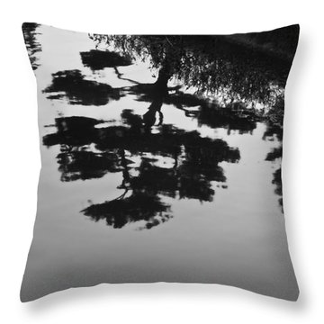 Tranquility II Throw Pillow by John Hansen