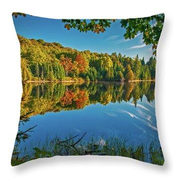 Tranquillity  Throw Pillow