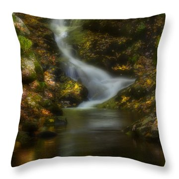 Throw Pillow featuring the photograph Tranquility by Ellen Heaverlo