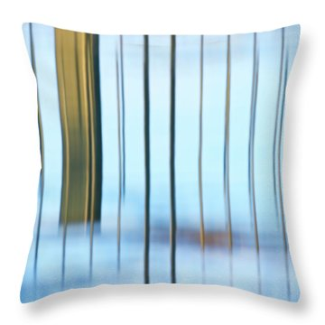 Throw Pillow featuring the photograph Transcendental... by Nina Stavlund