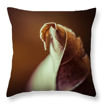 Transformation Throw Pillow by Yvette Van Teeffelen