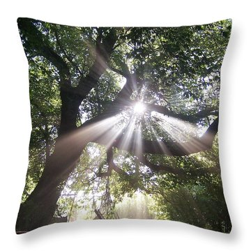 Transformed Throw Pillow by David and Lynn Keller