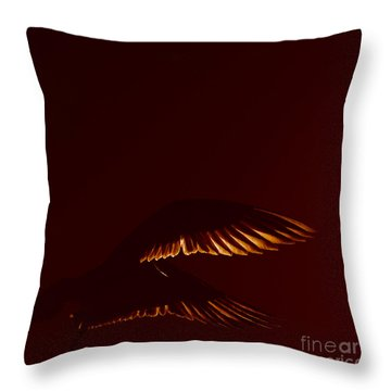 Transiently Translucent Throw Pillow