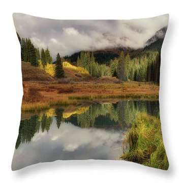 Throw Pillow featuring the photograph Transition by OLena Art Brand