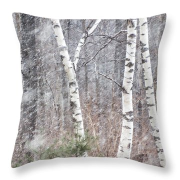 Transition, Spring Squall 3 - Throw Pillow